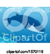 Clipart Of A Blue Whale Swimming With Fish Royalty Free Vector Illustration