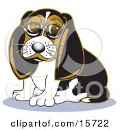 Cute Little Beagle Dog With Big Puppy Eyes Clipart Illustration