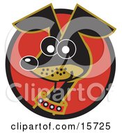 Poster, Art Print Of Alert And Cute Hyper Little Dachshund Dog