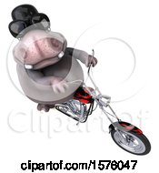 3d Hippo Biker Riding A Chopper Motorcycle On A White Background