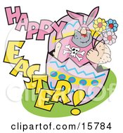 Big Hairy Man In A Bunny Suit Holding Flowers And Popping Out Of An Easter Egg Clipart Illustration