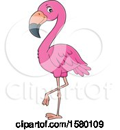 Clipart Of A Pink Flamingo Bird Royalty Free Vector Illustration by visekart