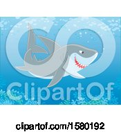 Clipart Of A Shark Swimming Over A Reef Royalty Free Vector Illustration