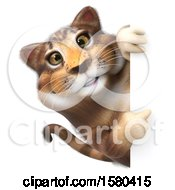 Clipart Of A 3d Tabby Kitty Cat Pointing Around A Sign On A White Background Royalty Free Illustration by Julos