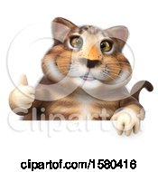 Clipart Of A 3d Tabby Kitty Cat Holding A Thumb Up On A White Background Royalty Free Illustration by Julos