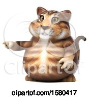Clipart Of A 3d Tabby Kitty Cat Pointing On A White Background Royalty Free Illustration by Julos