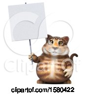 3d Tabby Kitty Cat Holding A Sign On A White Background