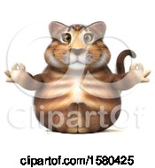 Clipart Of A 3d Tabby Kitty Cat Holding Meditating On A White Background Royalty Free Illustration by Julos
