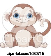 Cute Blue Eyed Stuffed Monkey Toy