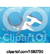 Clipart Of A Swimming Hammerhead Shark Over A Reef Royalty Free Vector Illustration
