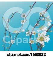 Background Of Branches With Spring Blossoms Over Blue Sky