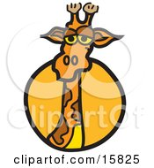 Curious Giraffe Looking Outwards Clipart Illustration