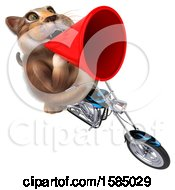 Clipart Of A 3d Tabby Kitty Cat Riding A Chopper Motorcycle On A White Background Royalty Free Illustration