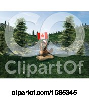 Clipart Of A 3d Beaver Holding A Canadian Flag Royalty Free Vector Illustration