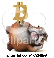 Clipart Of A 3d Bulldog Holding A Bitcoin Symbol On A White Background Royalty Free Illustration