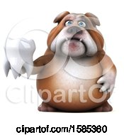 Clipart Of A 3d Bulldog Holding A Tooth On A White Background Royalty Free Illustration by Julos