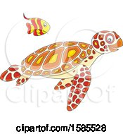 Swimming Fish And Sea Turtle