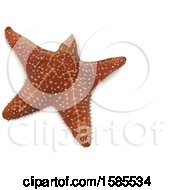 Clipart Of A 3d Starfish On A White Background Royalty Free Vector Illustration