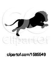 Silhouetted Male Lion With A Reflection Or Shadow On A White Background