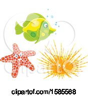 Clipart Of A Fish Starfish And Sea Urchin Royalty Free Vector Illustration