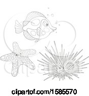 Clipart Of A Lineart Fish Starfish And Sea Urchin Royalty Free Vector Illustration