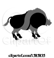 Silhouetted Boar With A Reflection Or Shadow On A White Background