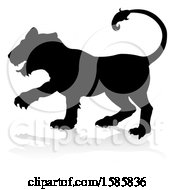 Silhouetted Lioness With A Reflection Or Shadow On A White Background
