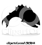 Silhouetted Fish With A Reflection Or Shadow On A White Background