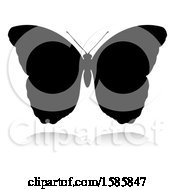 Silhouetted Butterfly With A Reflection Or Shadow On A White Background
