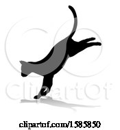 Silhouetted Landing Cat With A Reflection Or Shadow On A White Background
