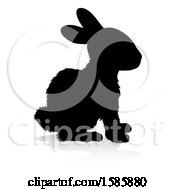Silhouetted Rabbit With A Reflection Or Shadow On A White Background