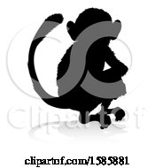 Silhouetted Monkey With A Reflection Or Shadow On A White Background