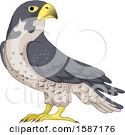 Clipart Of A Falcon Bird Royalty Free Vector Illustration