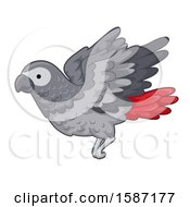 Red Tailed Gray Parrot Flying