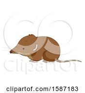 Clipart Of A Cute Shrew Royalty Free Vector Illustration