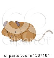 Clipart Of A Cute Vole Royalty Free Vector Illustration