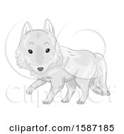 Poster, Art Print Of Cute White Arctic Wolf