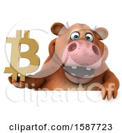Clipart Of A 3d Brown Cow Holding A Bitcoin Symbol On A White Background Royalty Free Illustration by Julos
