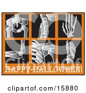 Series Of Xrays With Text Reading Happy Halloween Clipart Illustration