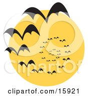 Circling Vortex Of Vampire Bats Silhouetted Against A Full Moon