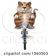 Clipart Of A 3d Tabby Kitty Cat Biker Riding A Chopper Motorcycle On A White Background Royalty Free Illustration by Julos