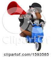 Clipart Of A 3d Gentleman Or Business Bulldog Riding A Scooter On A White Background Royalty Free Illustration by Julos