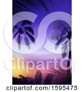 Tropical Sunset And Palm Tree Travel Background