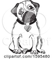 Clipart Of A Cute Sitting Pug With A Heart Collar Royalty Free Vector Illustration