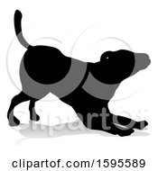Silhouetted Dog With A Reflection Or Shadow On A White Background