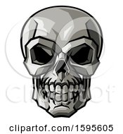 Stylised Human Skull