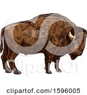 Clipart Of A Sketched Bison Royalty Free Vector Illustration by Vector Tradition SM