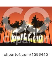 Tropical Orange Sunset With Silhouetted Palm Trees