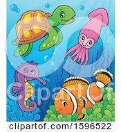 Sea Creatures At The Bottom Of The Ocean