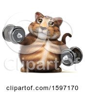 Clipart Of A 3d Tabby Kitty Cat Holding Dumbbells On A White Background Royalty Free Illustration by Julos
